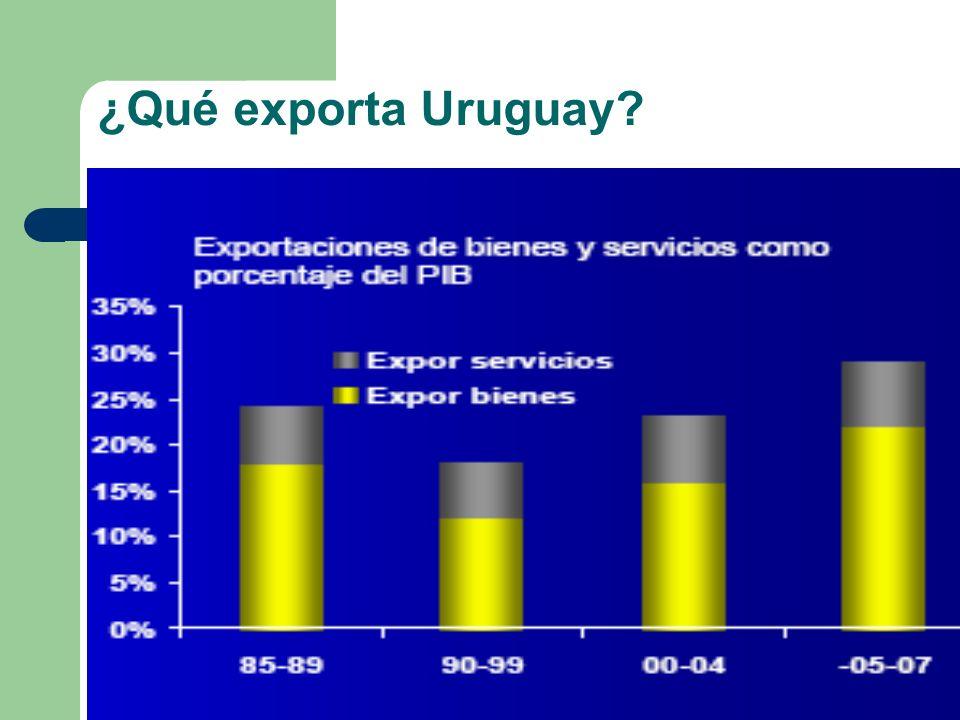 ¿Qué exporta Uruguay