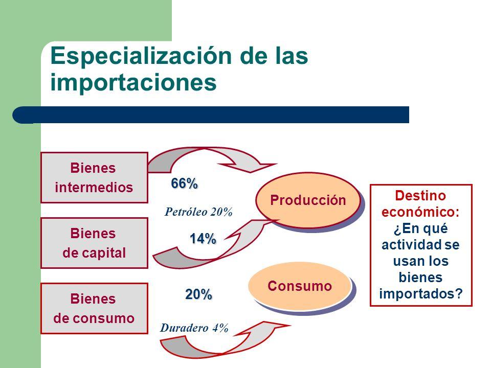 Especialización de las importaciones