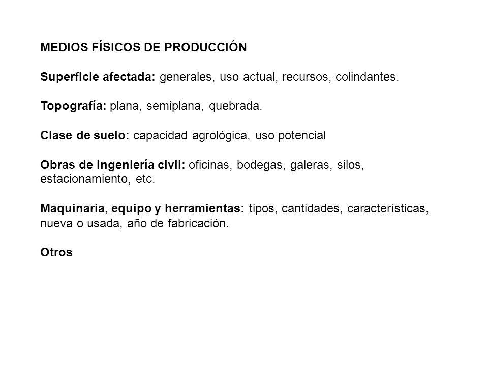 MEDIOS FÍSICOS DE PRODUCCIÓN
