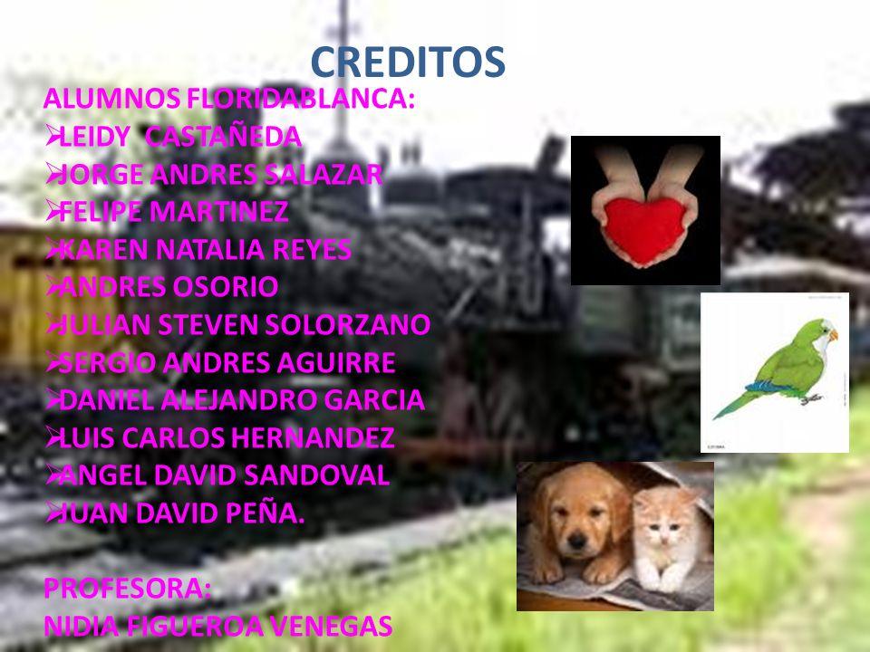 CREDITOS ALUMNOS FLORIDABLANCA: LEIDY CASTAÑEDA JORGE ANDRES SALAZAR