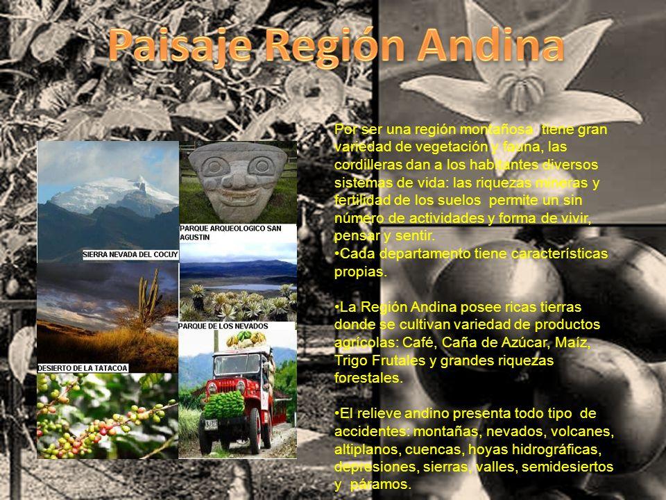 Paisaje Región Andina
