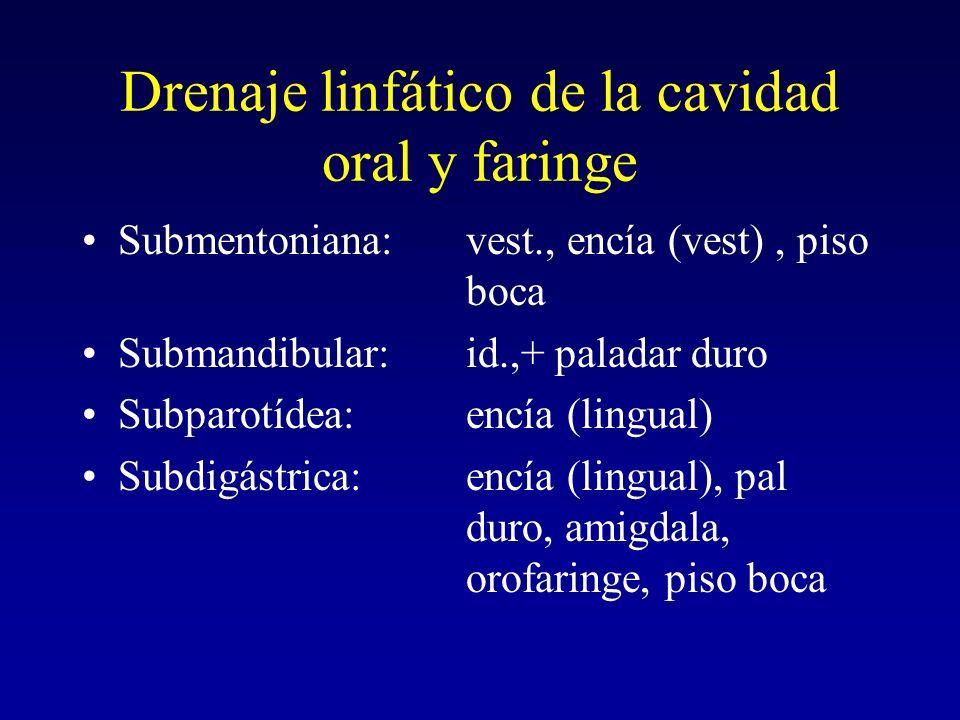 Drenaje linfático de la cavidad oral y faringe