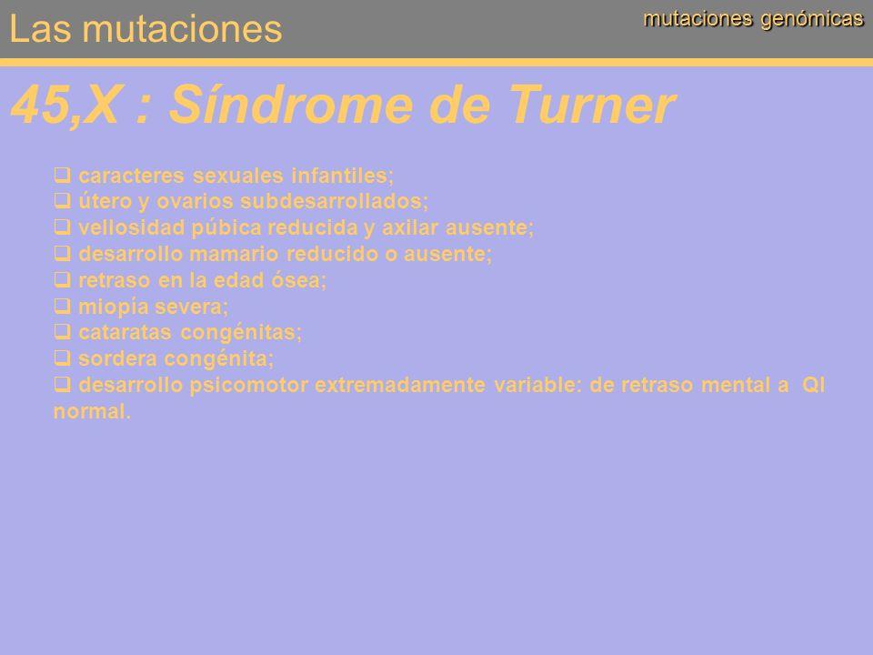 45,X : Síndrome de Turner Las mutaciones mutaciones genómicas