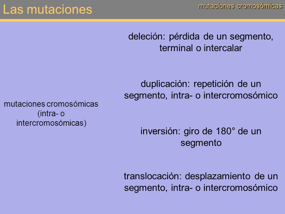 Las mutaciones deleción: pérdida de un segmento, terminal o intercalar