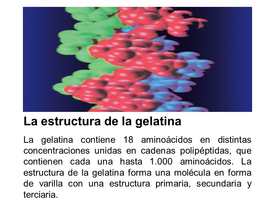 La estructura de la gelatina