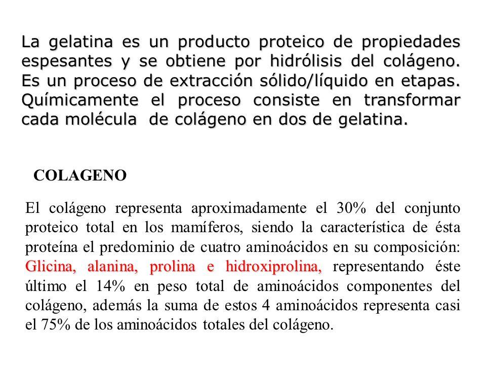 La gelatina es un producto proteico de propiedades espesantes y se obtiene por hidrólisis del colágeno. Es un proceso de extracción sólido/líquido en etapas. Químicamente el proceso consiste en transformar cada molécula de colágeno en dos de gelatina.