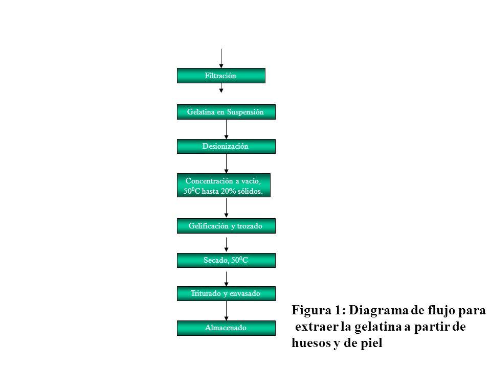 Figura 1: Diagrama de flujo para extraer la gelatina a partir de