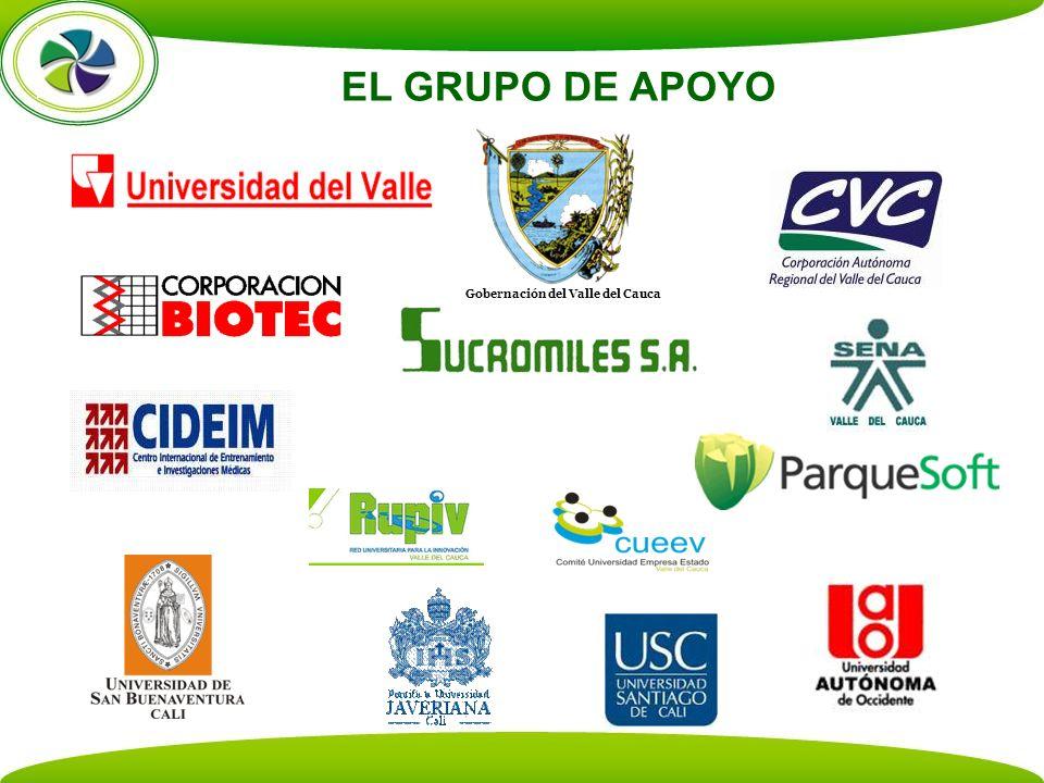 EL GRUPO DE APOYO Gobernación del Valle del Cauca