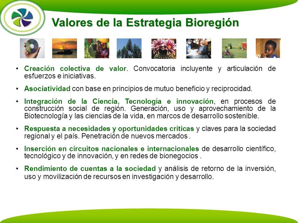 Valores de la Estrategia Bioregión