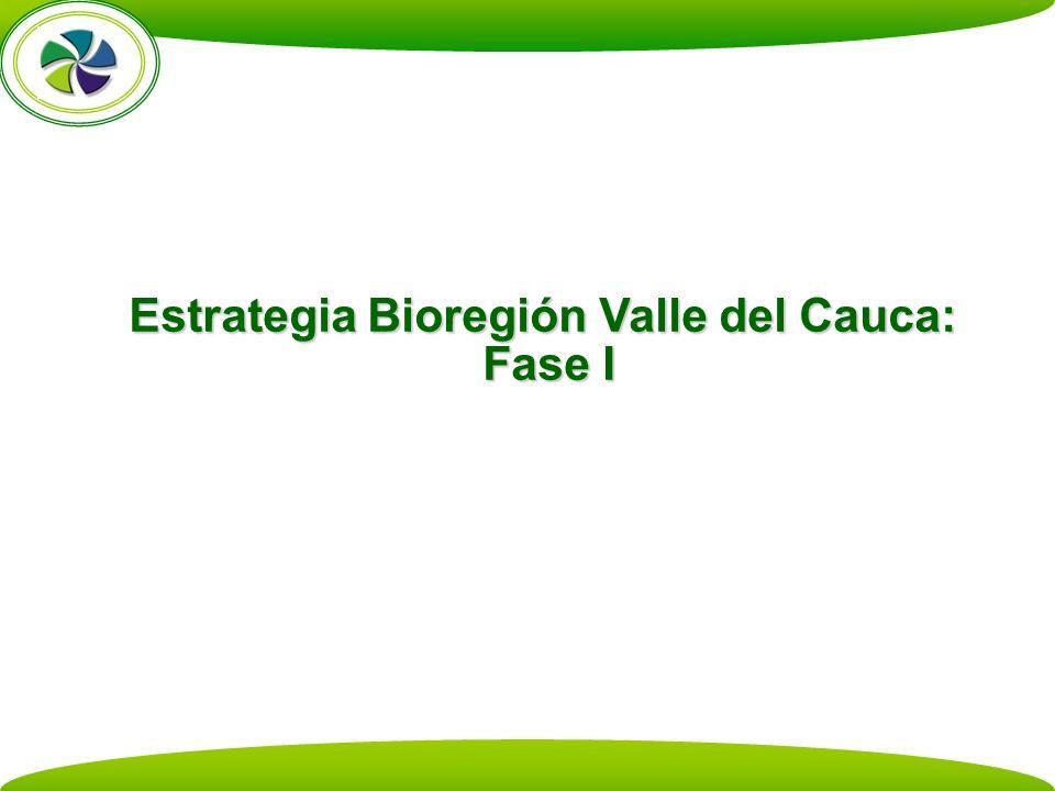 Estrategia Bioregión Valle del Cauca: Fase I
