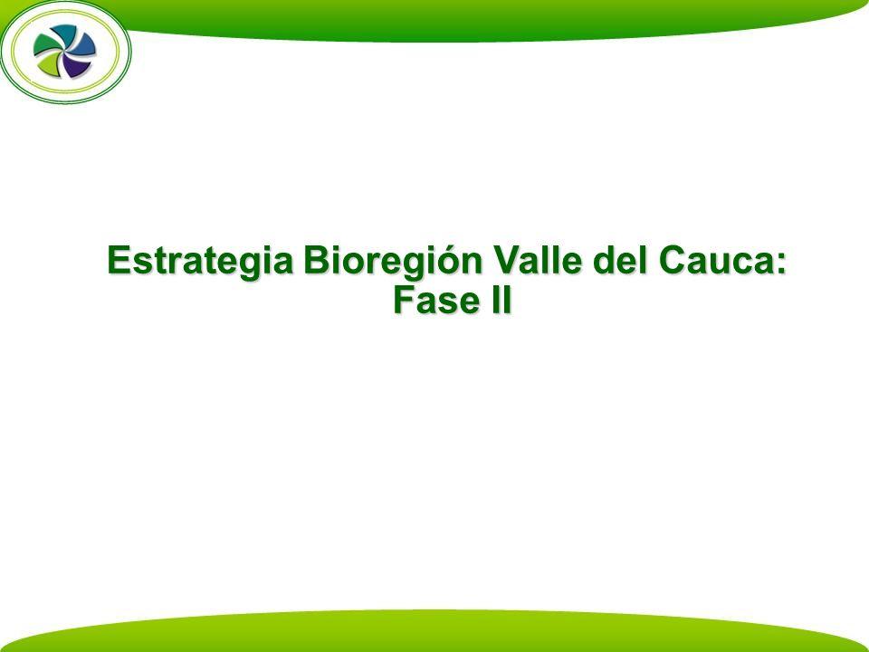 Estrategia Bioregión Valle del Cauca: Fase II