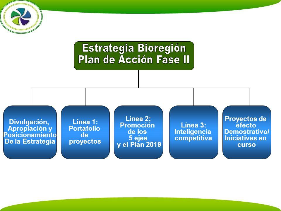 Estrategia Bioregión Plan de Acción Fase II