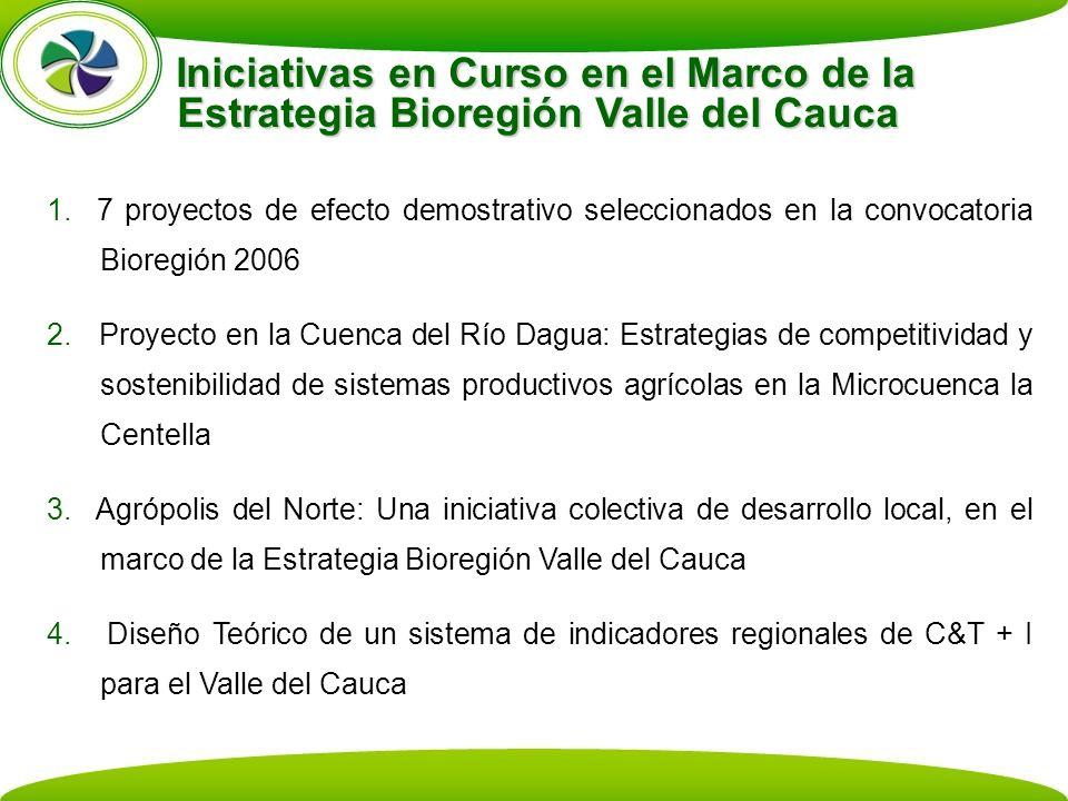 Iniciativas en Curso en el Marco de la Estrategia Bioregión Valle del Cauca