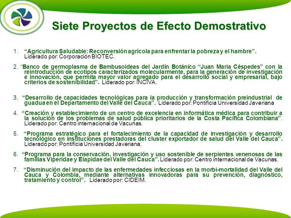 Siete Proyectos de Efecto Demostrativo