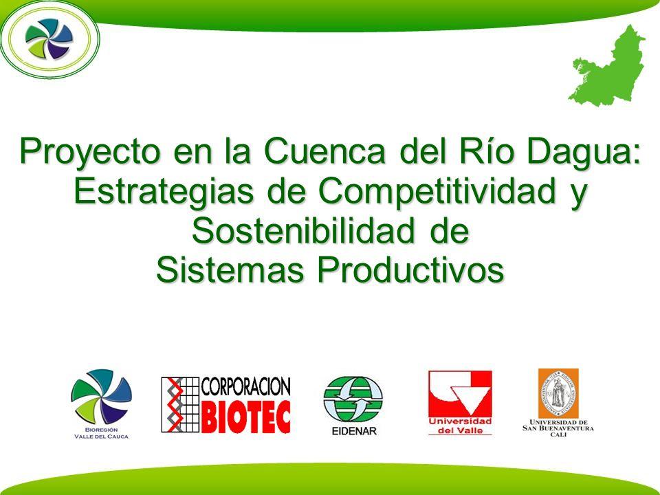 Proyecto en la Cuenca del Río Dagua: Estrategias de Competitividad y Sostenibilidad de Sistemas Productivos