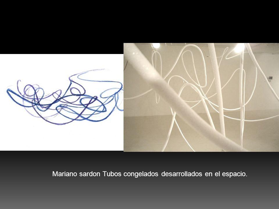 Mariano sardon Tubos congelados desarrollados en el espacio.