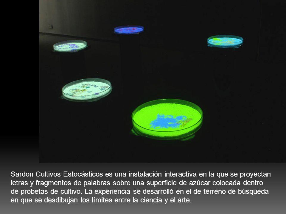 Sardon Cultivos Estocásticos es una instalación interactiva en la que se proyectan letras y fragmentos de palabras sobre una superficie de azúcar colocada dentro de probetas de cultivo.