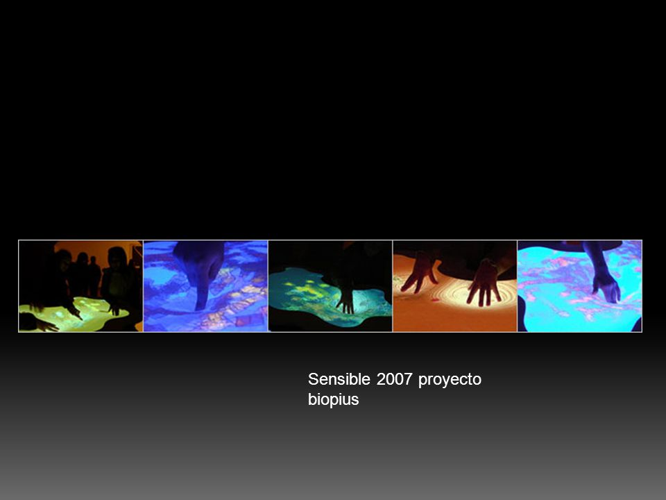 SENSIBLE - 2007