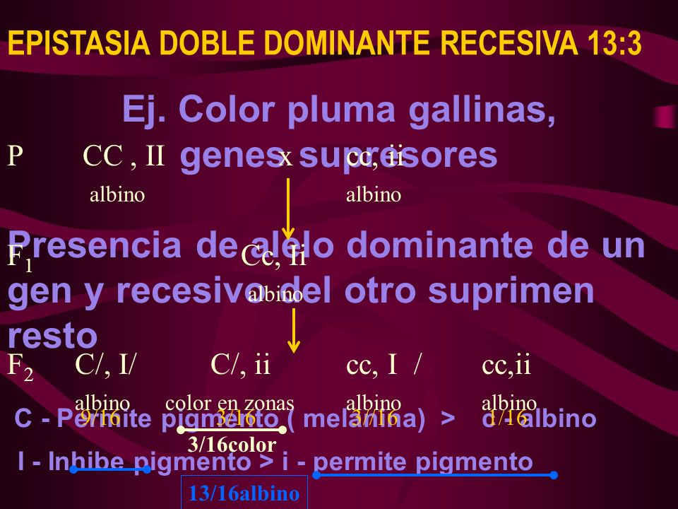 Ej. Color pluma gallinas,