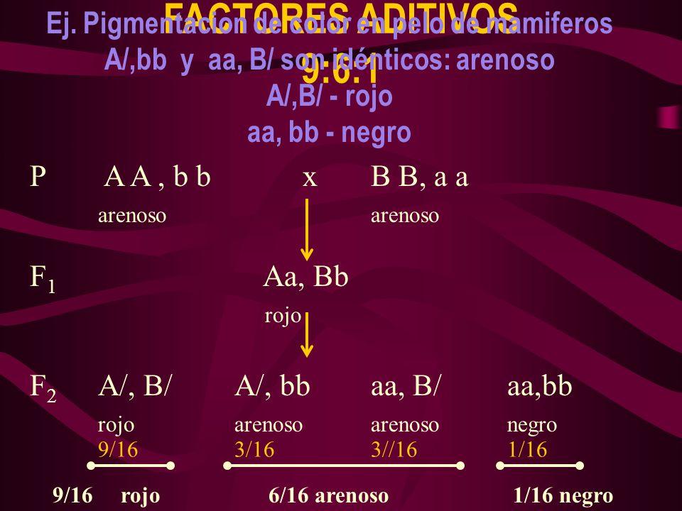 FACTORES ADITIVOS 9:6:1 Ej. Pigmentacion de color en pelo de mamiferos