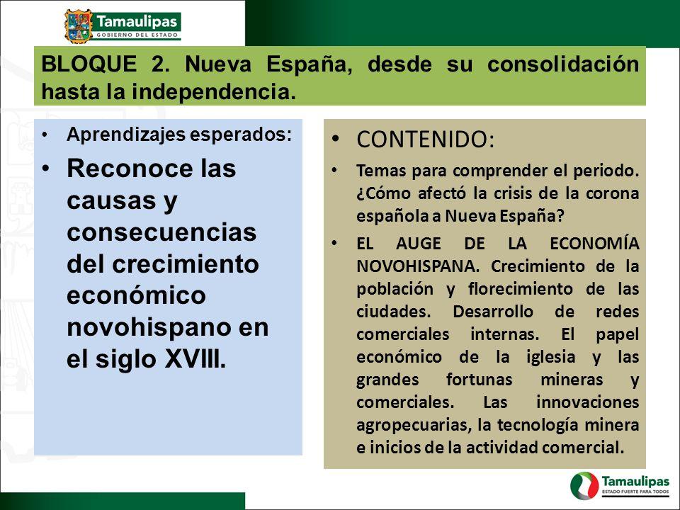 BLOQUE 2. Nueva España, desde su consolidación hasta la independencia.
