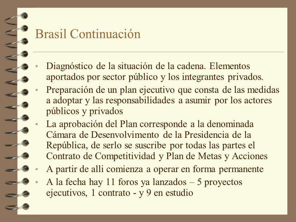 Brasil Continuación Diagnóstico de la situación de la cadena. Elementos aportados por sector público y los integrantes privados.
