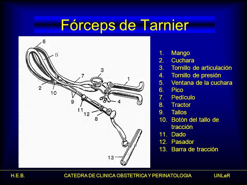 Fórceps de Tarnier Mango Cuchara Tornillo de articulación