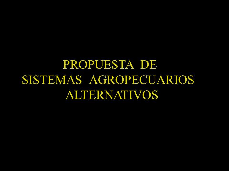 SISTEMAS AGROPECUARIOS