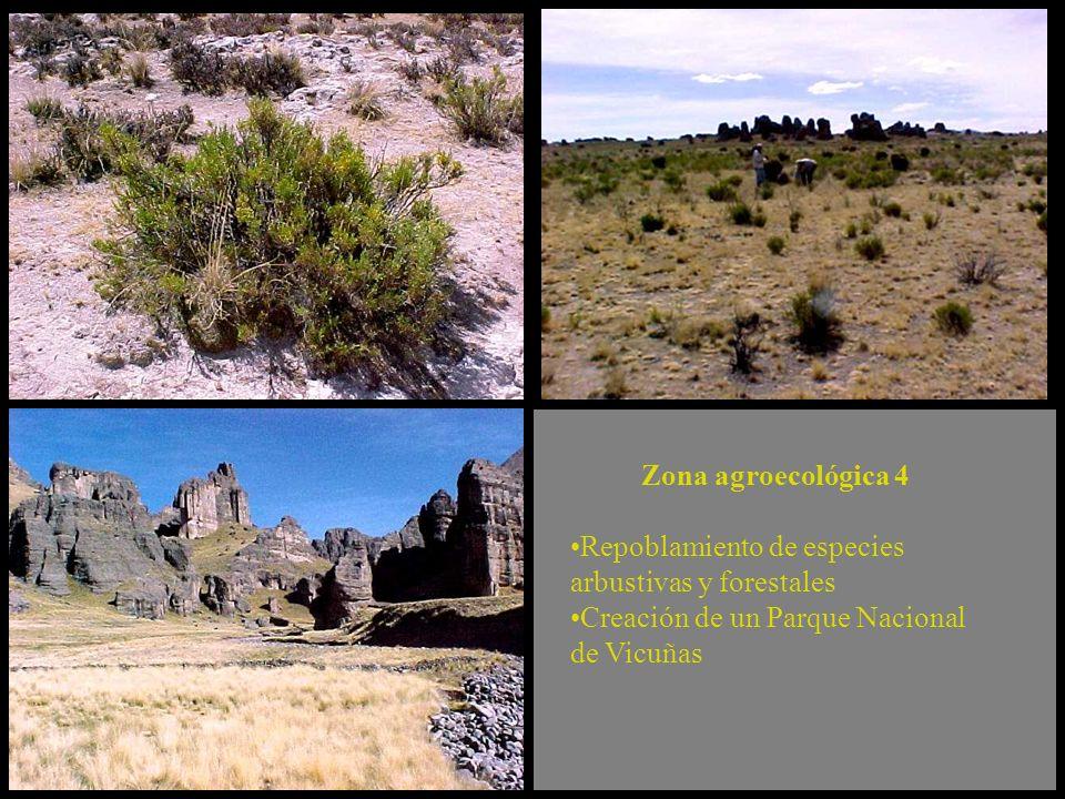 Zona agroecológica 4 Repoblamiento de especies arbustivas y forestales. Creación de un Parque Nacional.