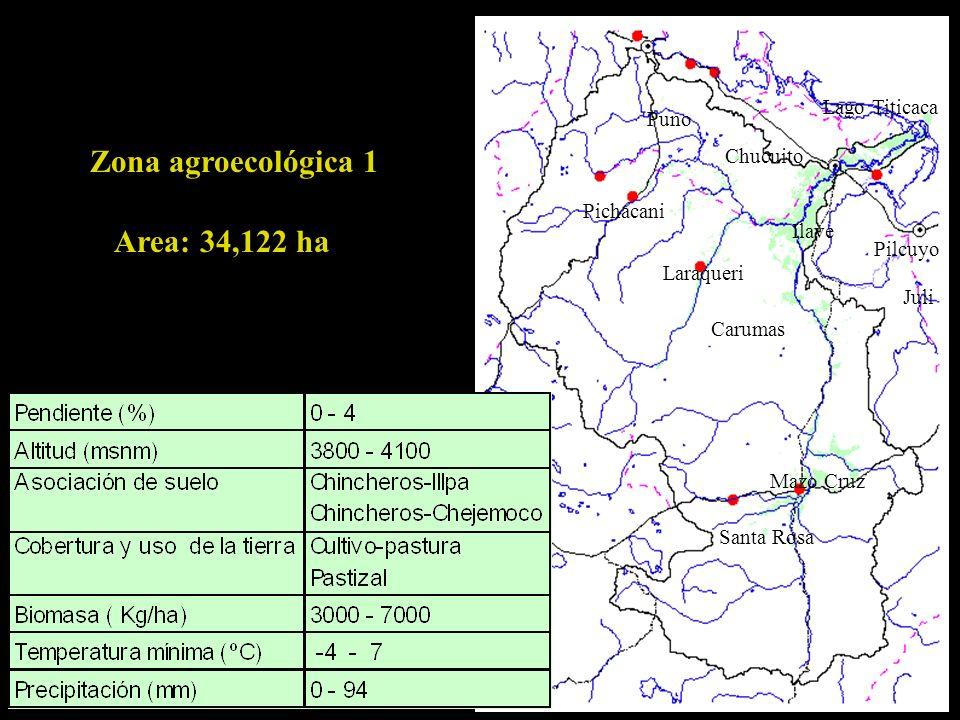 Zona agroecológica 1 Area: 34,122 ha Lago Titicaca Puno Chucuito