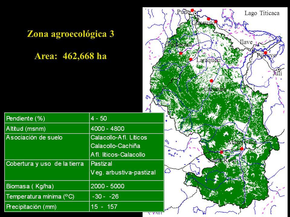 Zona agroecológica 3 Area: 462,668 ha Puno Lago Titicaca Chucuito
