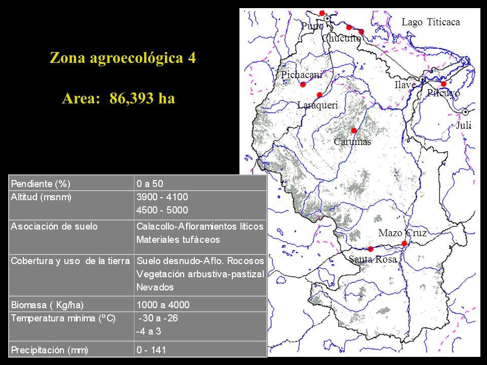 Zona agroecológica 4 Area: 86,393 ha Lago Titicaca Puno Chucuito