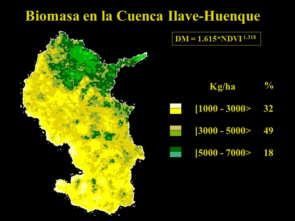 Biomasa en la Cuenca Ilave-Huenque