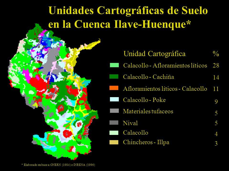 Unidades Cartográficas de Suelo en la Cuenca Ilave-Huenque*