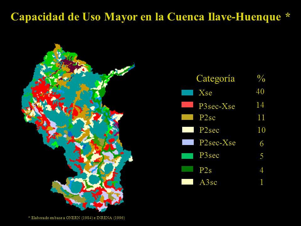 Capacidad de Uso Mayor en la Cuenca Ilave-Huenque *