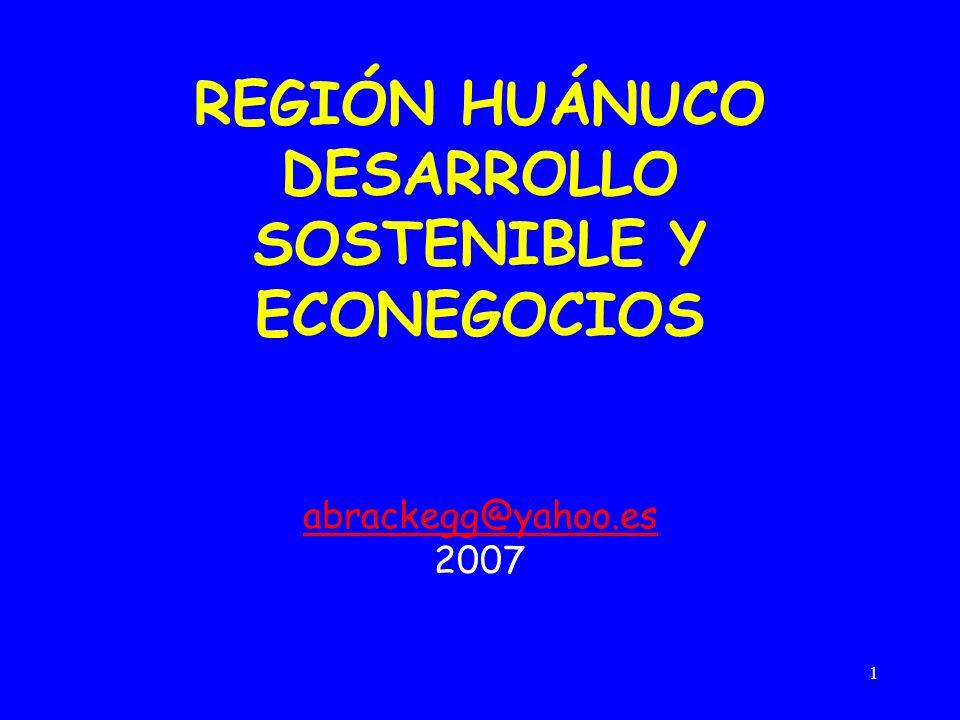 REGIÓN HUÁNUCO DESARROLLO SOSTENIBLE Y ECONEGOCIOS