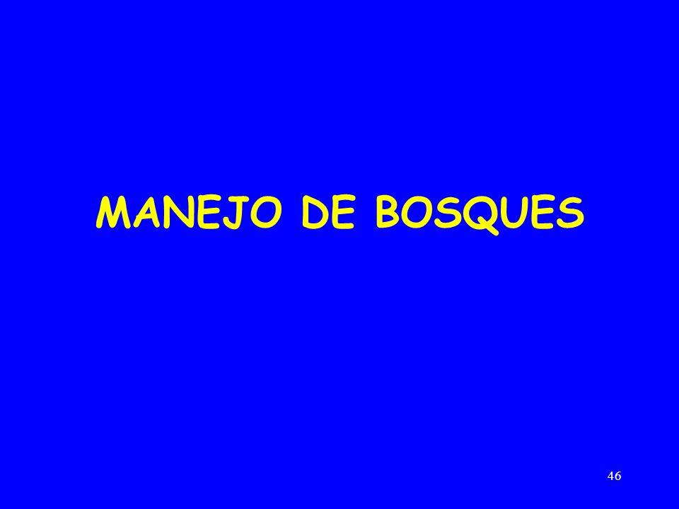 MANEJO DE BOSQUES