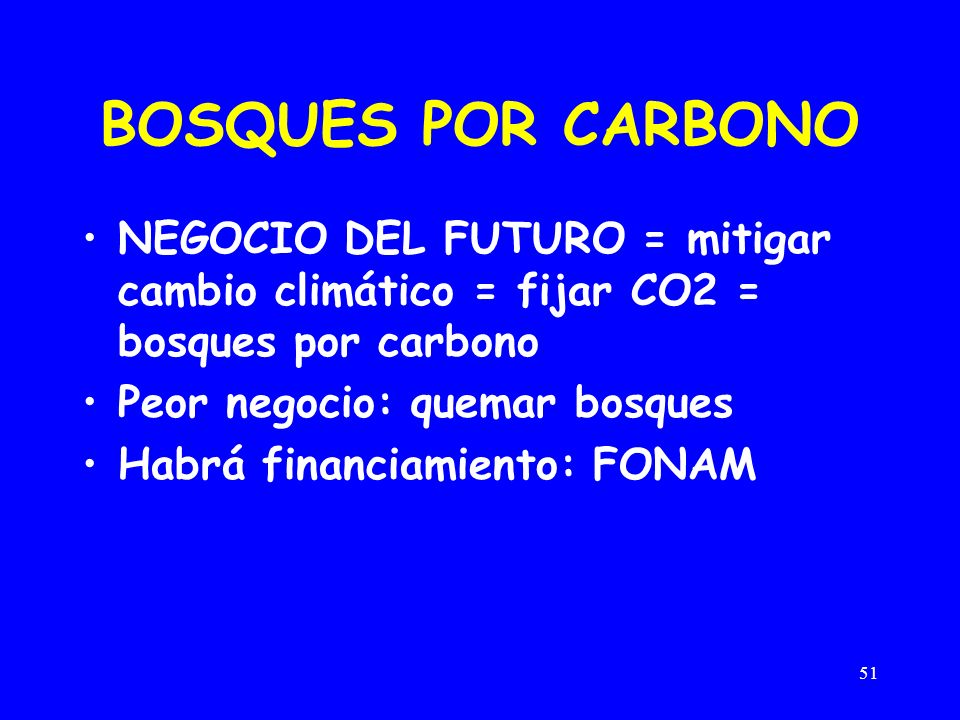 BOSQUES POR CARBONO NEGOCIO DEL FUTURO = mitigar cambio climático = fijar CO2 = bosques por carbono.