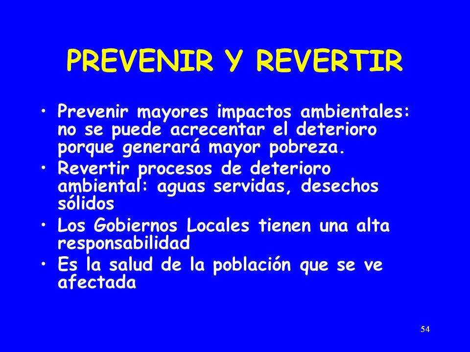 PREVENIR Y REVERTIR Prevenir mayores impactos ambientales: no se puede acrecentar el deterioro porque generará mayor pobreza.