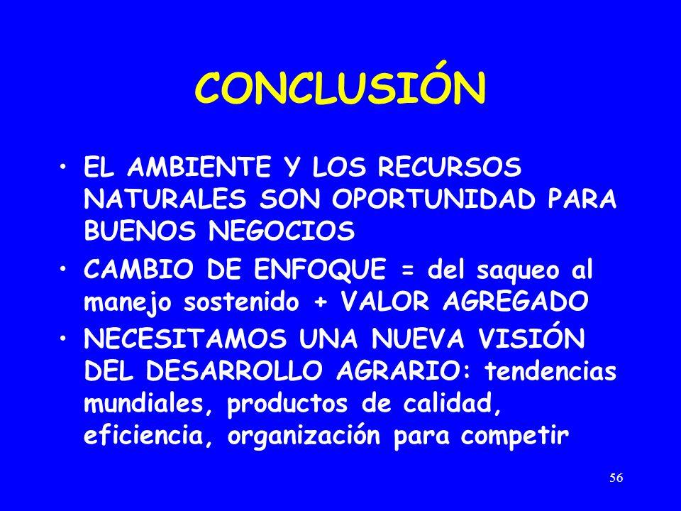 CONCLUSIÓN EL AMBIENTE Y LOS RECURSOS NATURALES SON OPORTUNIDAD PARA BUENOS NEGOCIOS.