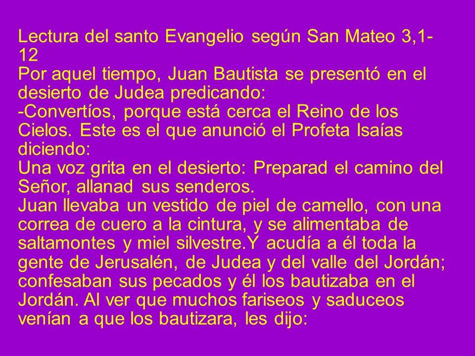 Lectura del santo Evangelio según San Mateo 3,1-12