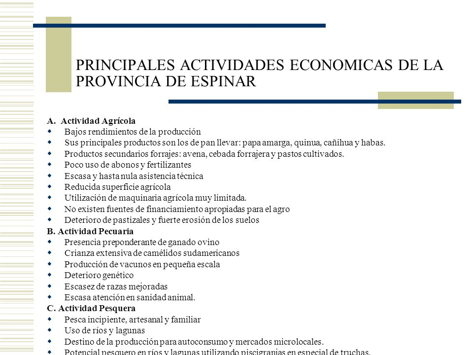 PRINCIPALES ACTIVIDADES ECONOMICAS DE LA PROVINCIA DE ESPINAR