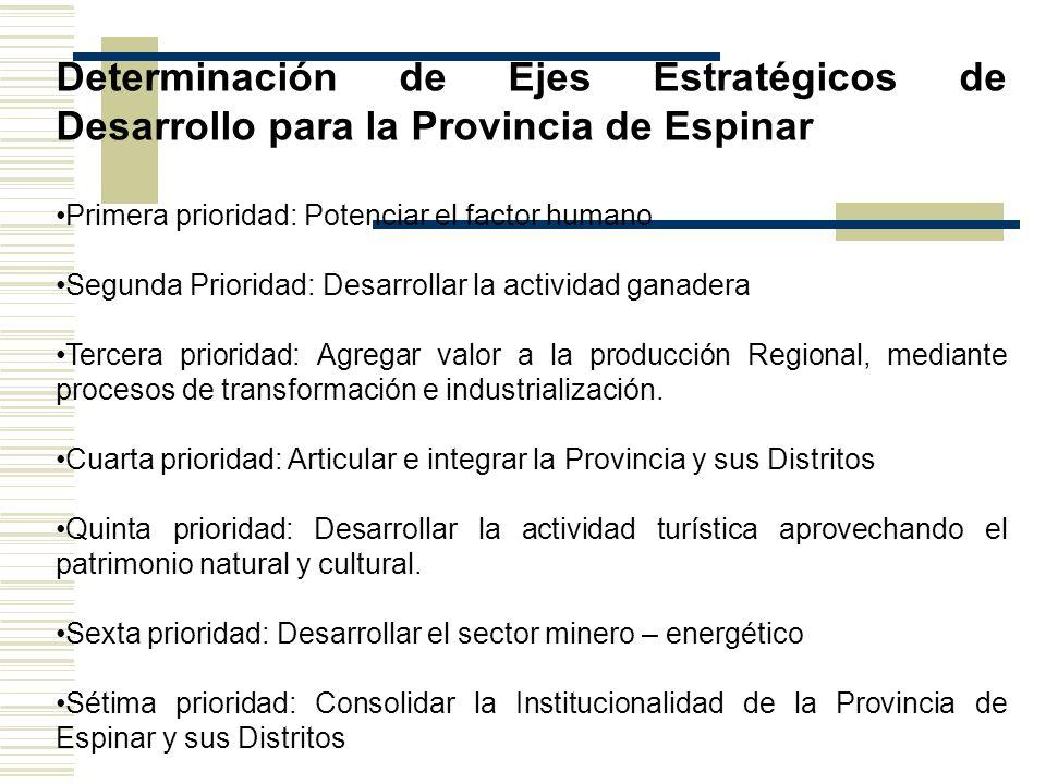 Determinación de Ejes Estratégicos de Desarrollo para la Provincia de Espinar