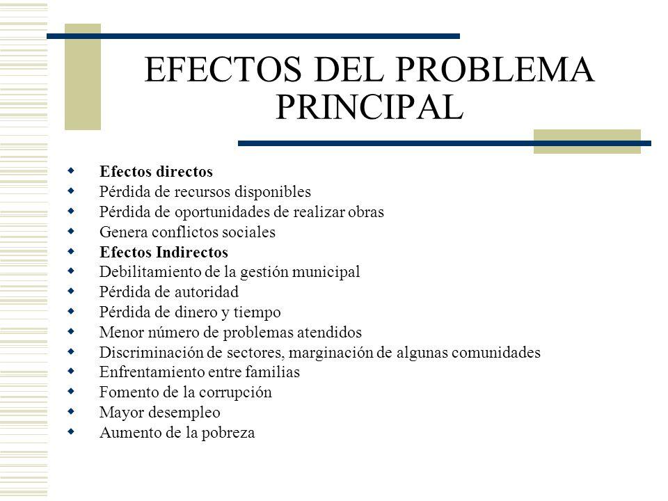 EFECTOS DEL PROBLEMA PRINCIPAL