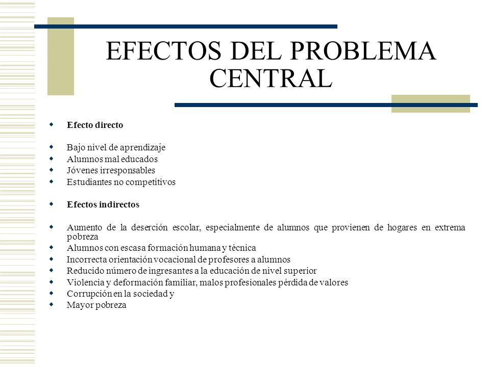 EFECTOS DEL PROBLEMA CENTRAL
