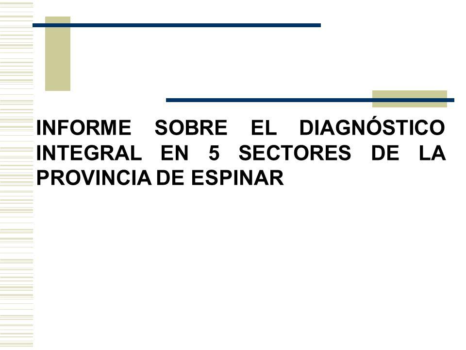INFORME SOBRE EL DIAGNÓSTICO INTEGRAL EN 5 SECTORES DE LA PROVINCIA DE ESPINAR