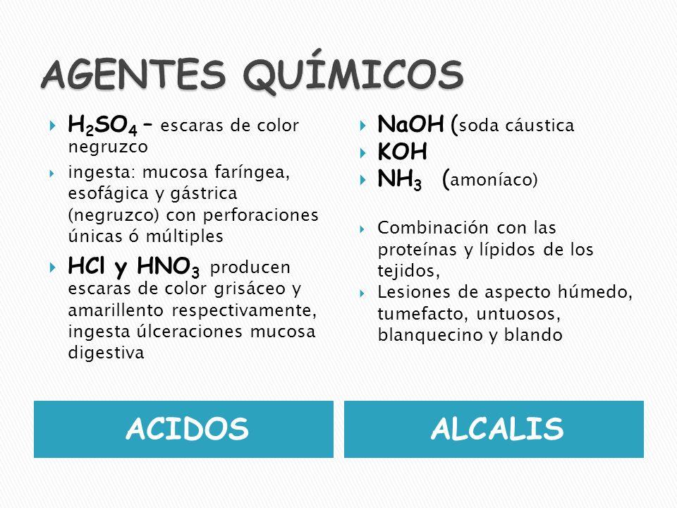 AGENTES QUÍMICOS ACIDOS ALCALIS H2SO4 – escaras de color negruzco