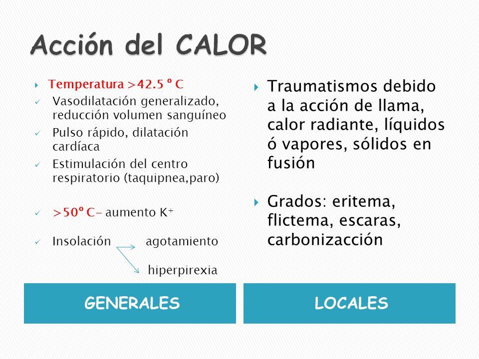 Acción del CALOR Temperatura >42.5 º C. Vasodilatación generalizado, reducción volumen sanguíneo.