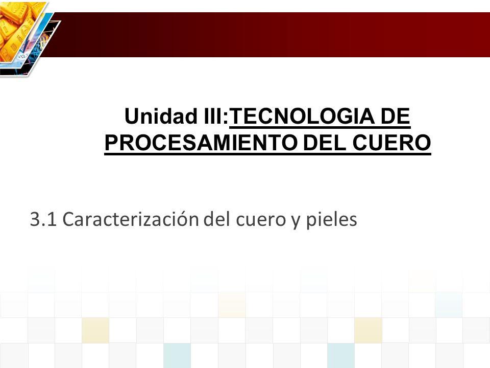 Unidad III:TECNOLOGIA DE PROCESAMIENTO DEL CUERO
