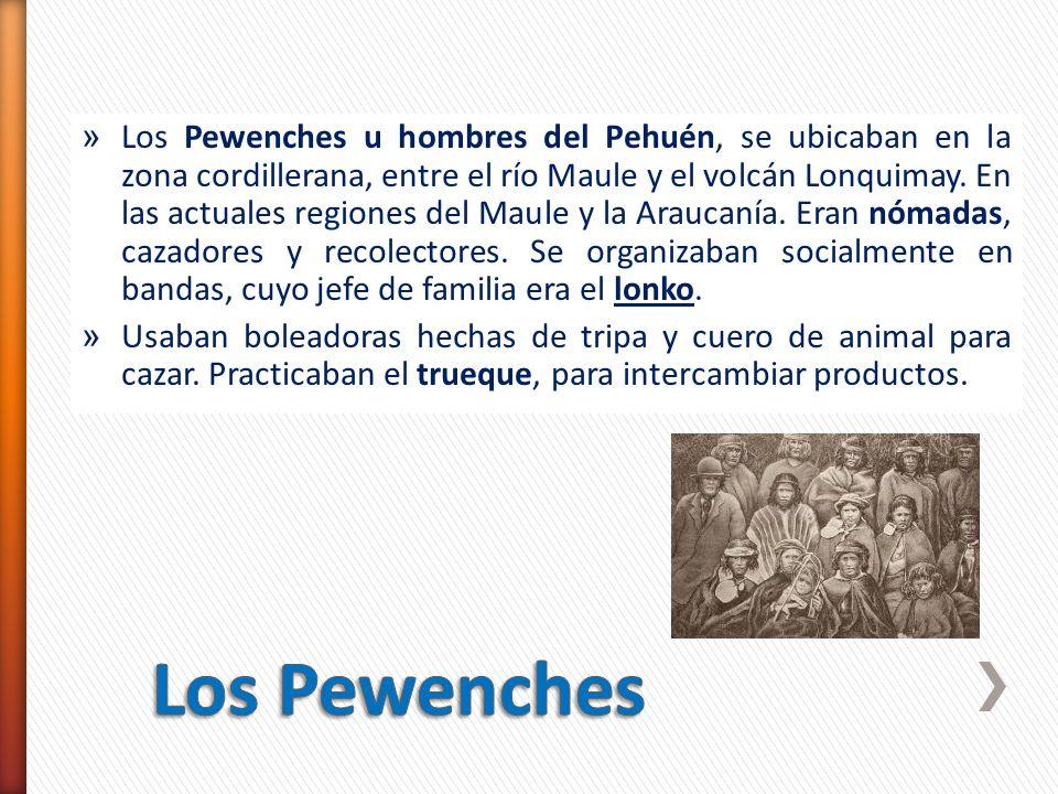Los Pewenches u hombres del Pehuén, se ubicaban en la zona cordillerana, entre el río Maule y el volcán Lonquimay. En las actuales regiones del Maule y la Araucanía. Eran nómadas, cazadores y recolectores. Se organizaban socialmente en bandas, cuyo jefe de familia era el lonko.
